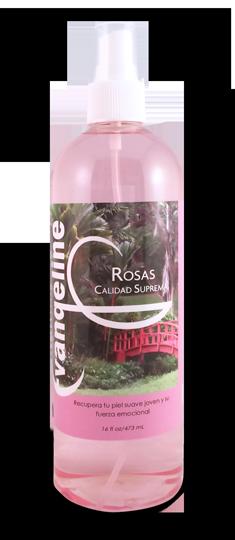 Colonia Evangeline Rosas